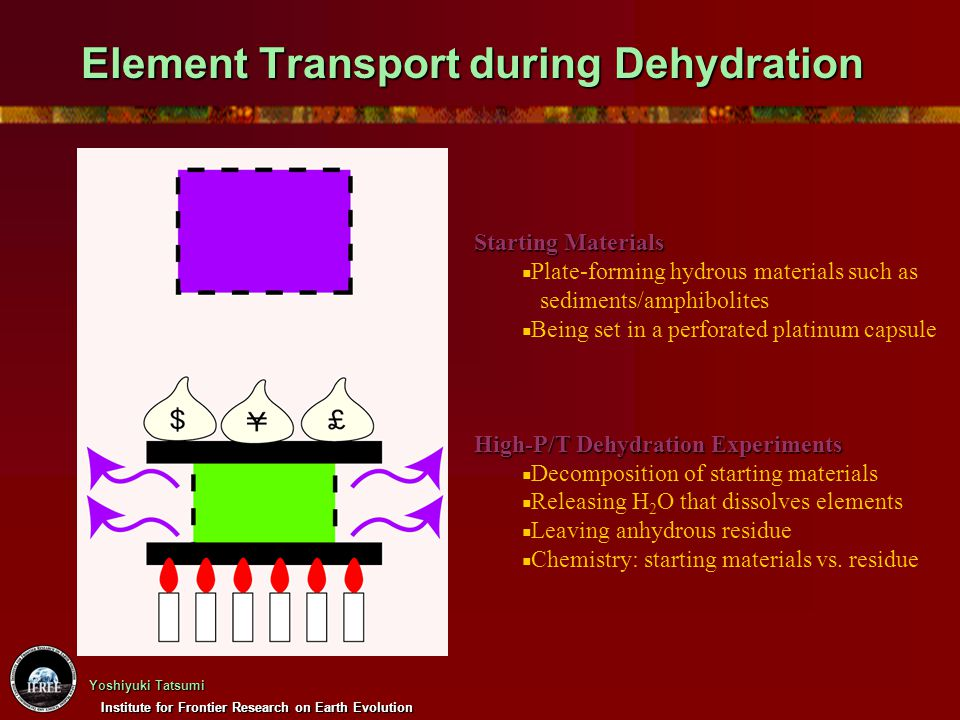 Element Transport during Dehydration