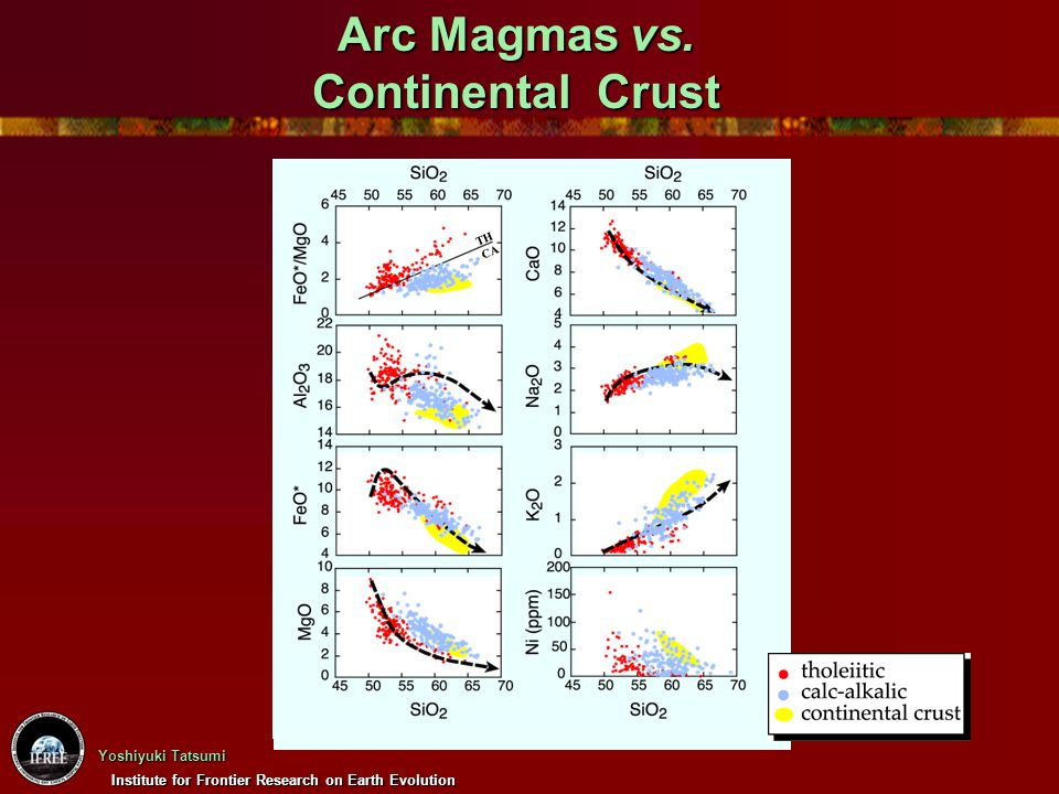 Arc Magmas vs. Continental Crust