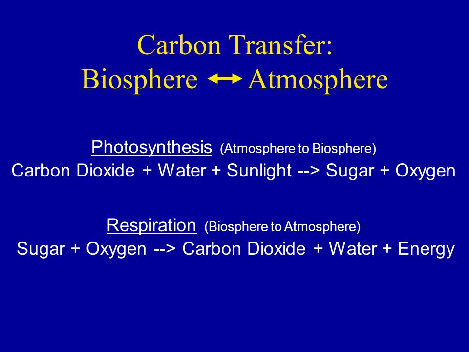 Carbon Transfer: Biosphere Atmosphere