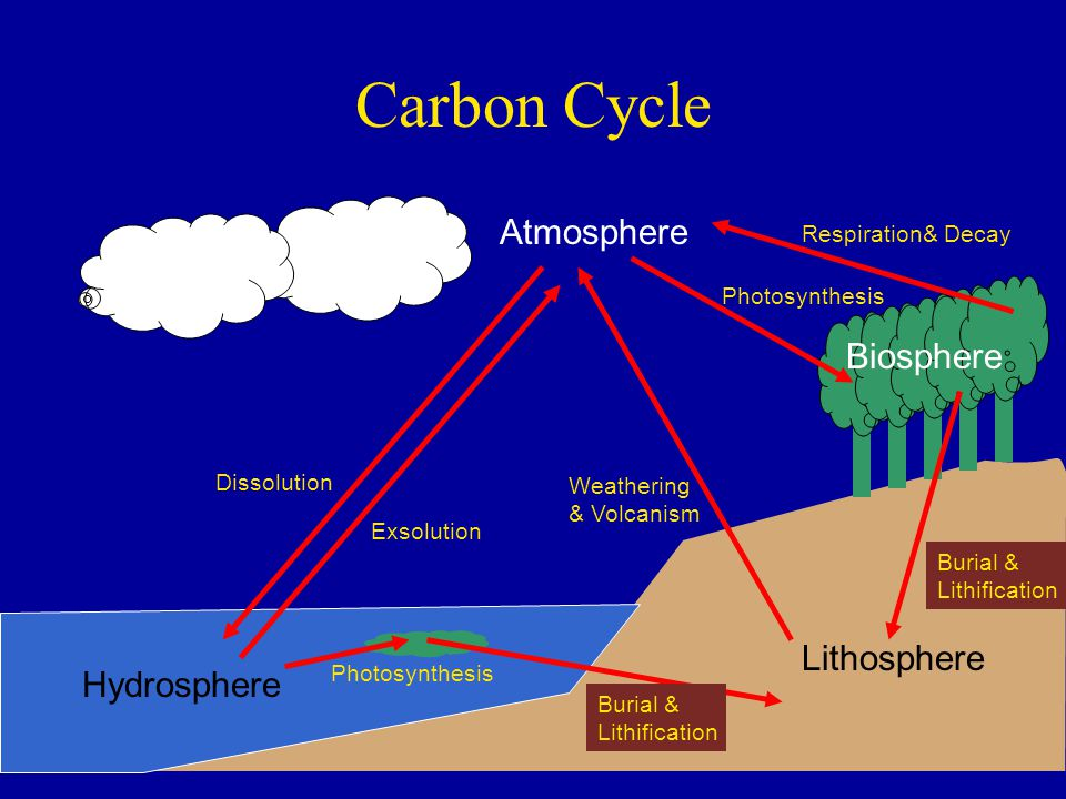 Carbon Cycle Atmosphere Biosphere Lithosphere Hydrosphere