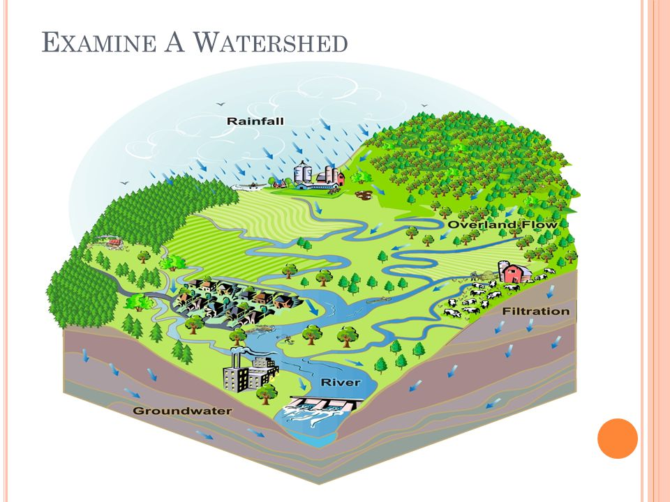 Examine A Watershed