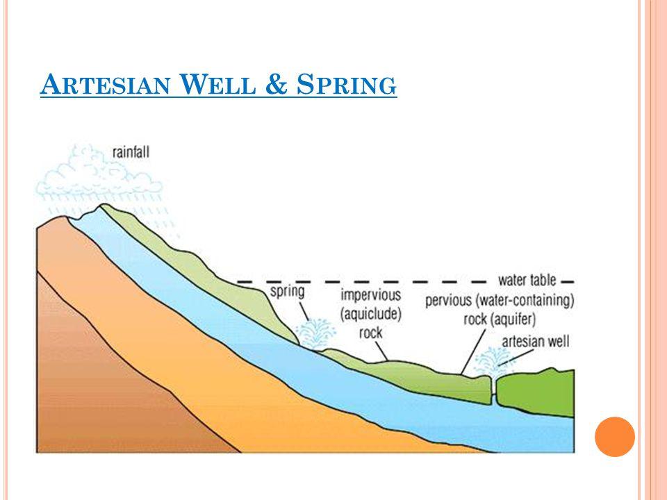 Artesian Well & Spring