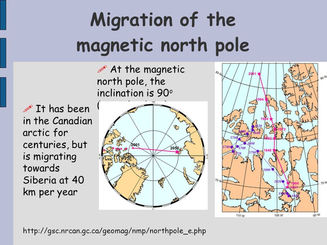 Migration of the magnetic north pole