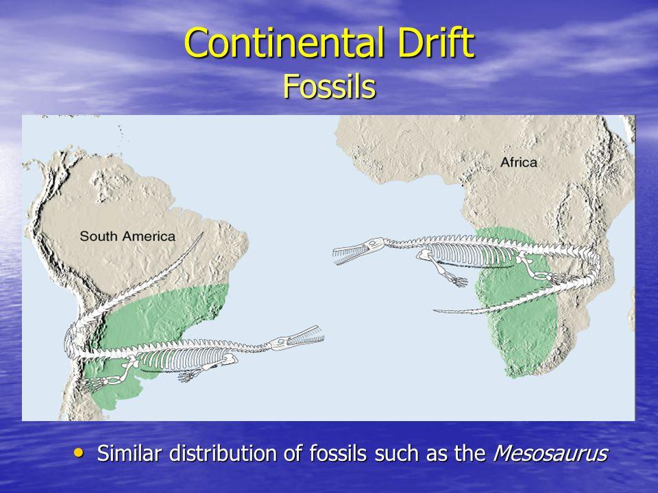 Continental Drift Fossils