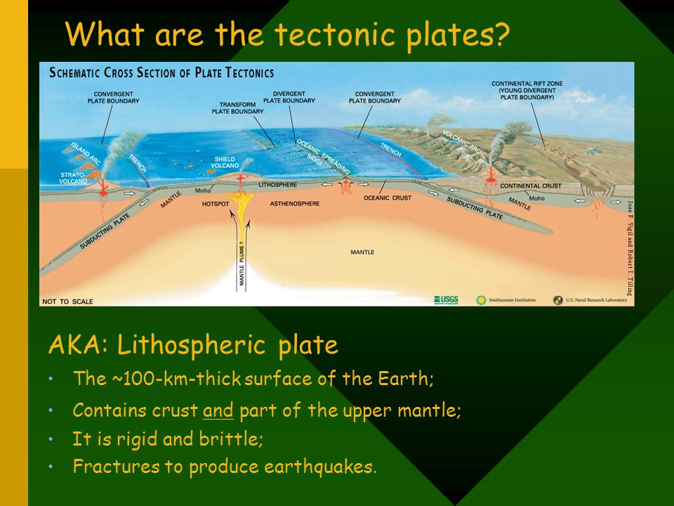 What are the tectonic plates
