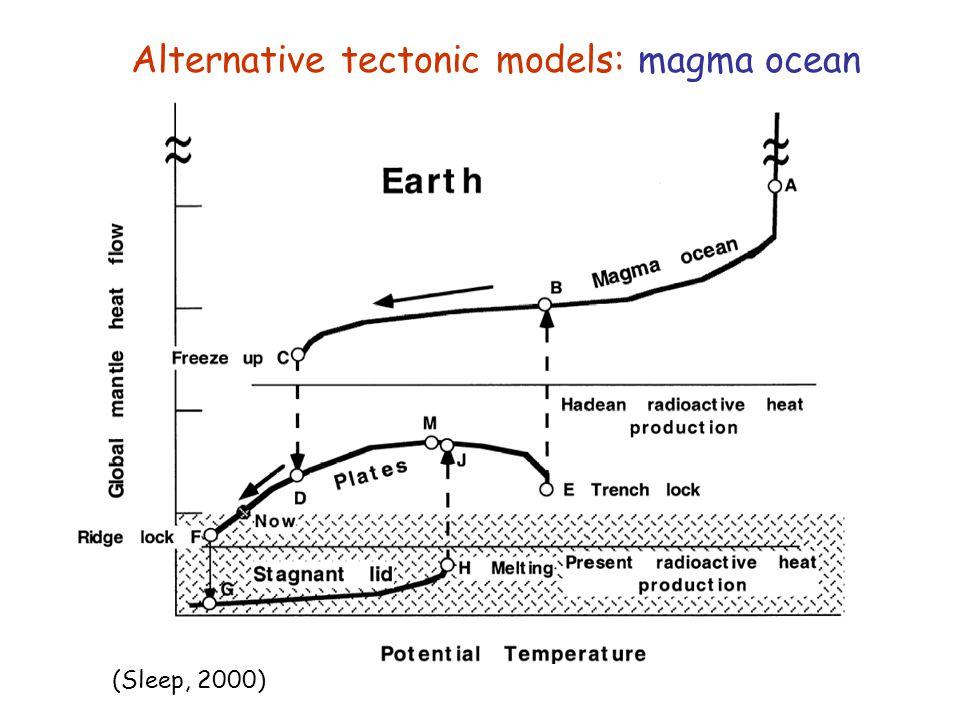 Alternative tectonic models: magma ocean
