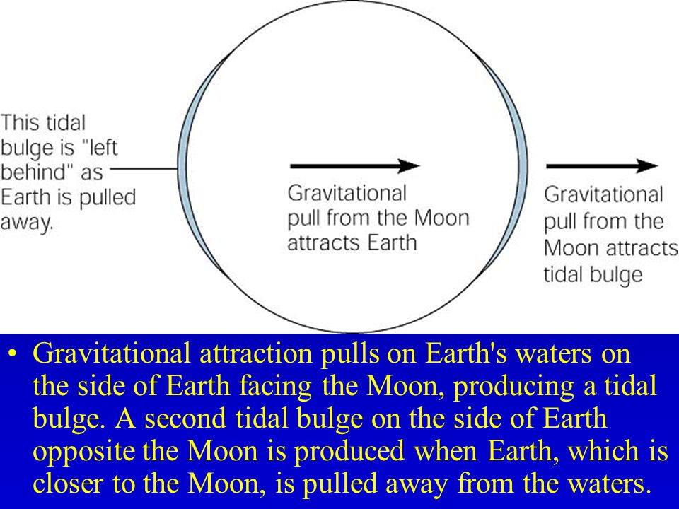 Gravitational attraction pulls on Earth s waters on the side of Earth facing the Moon, producing a tidal bulge.