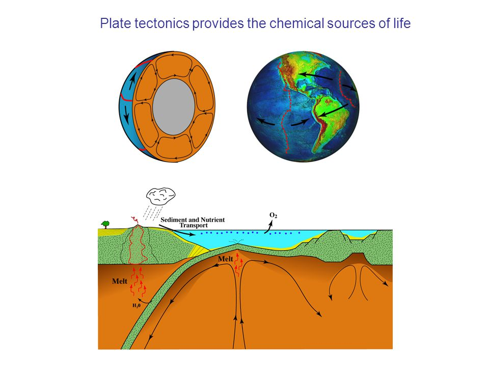 Plate tectonics provides the chemical sources of life
