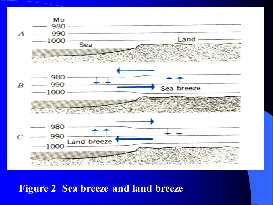 Figure 2 Sea breeze and land breeze