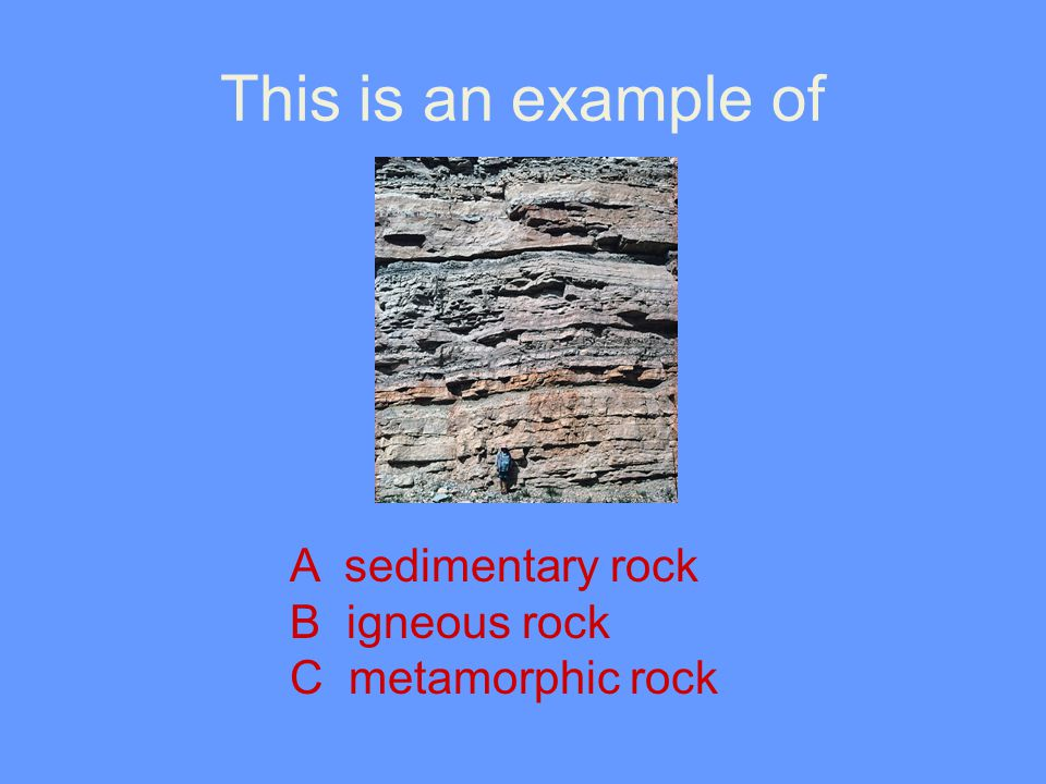 This is an example of A sedimentary rock B igneous rock