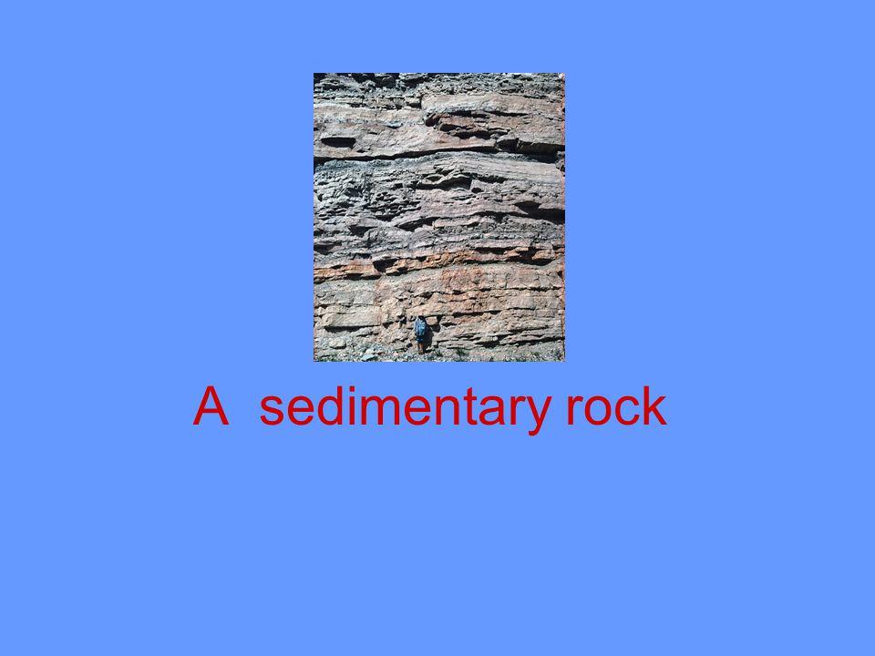A sedimentary rock