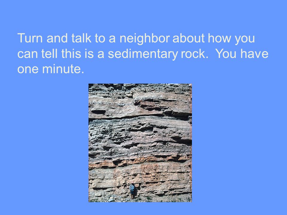 Turn and talk to a neighbor about how you