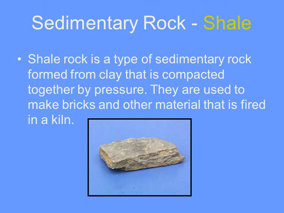 Sedimentary Rock - Shale