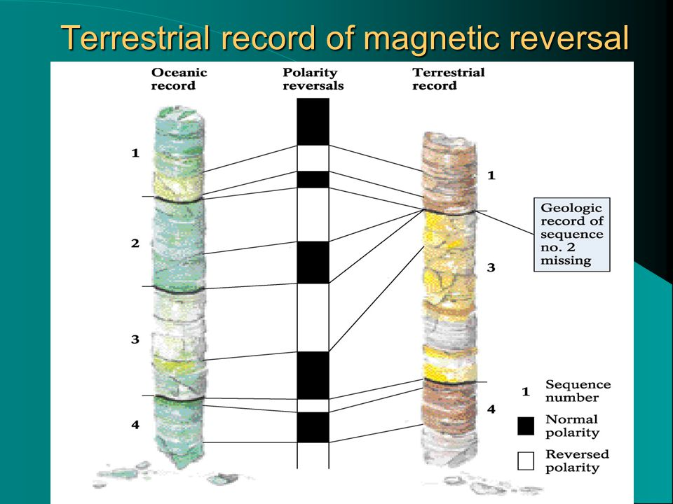 Terrestrial record of magnetic reversal