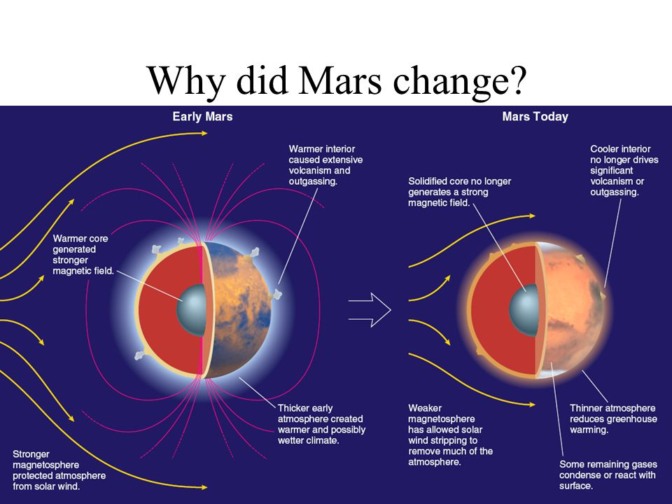 Why did Mars change Enlarge labels