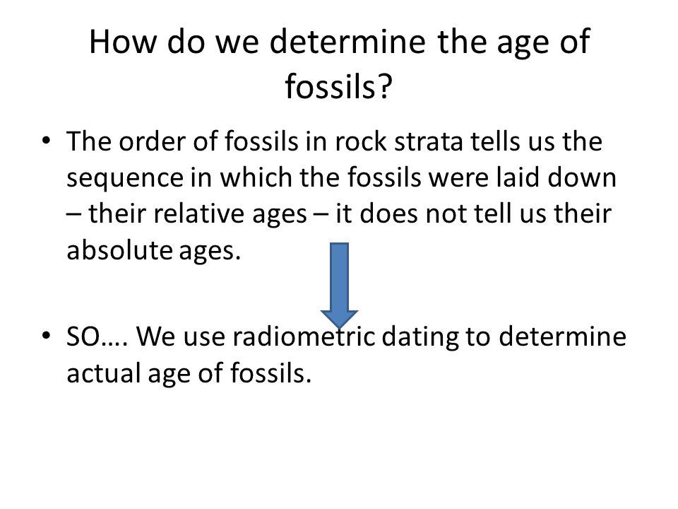 How do we determine the age of fossils