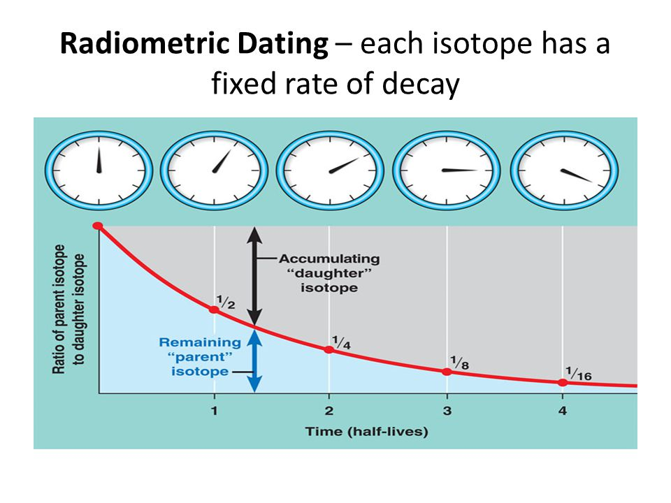 Radiometric Dating – each isotope has a fixed rate of decay