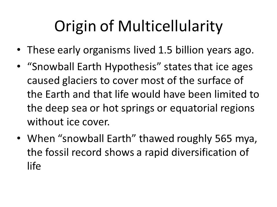 Origin of Multicellularity