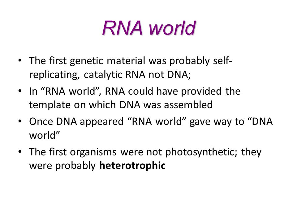 RNA world The first genetic material was probably self-replicating, catalytic RNA not DNA;