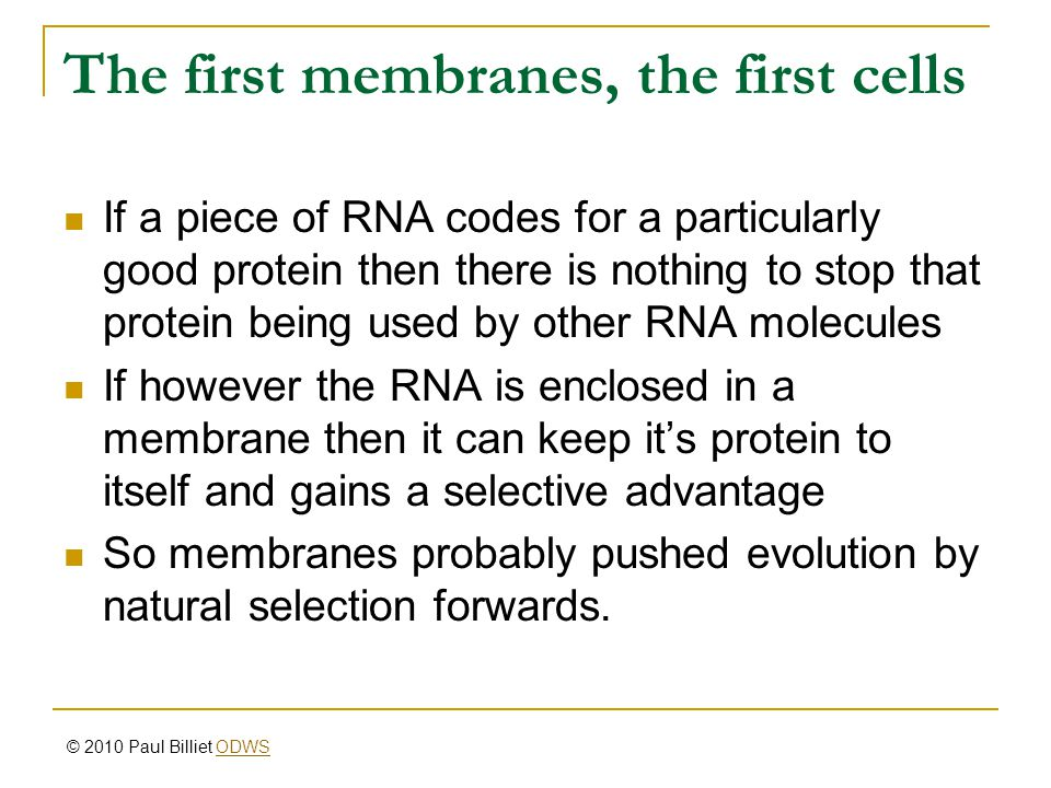 The first membranes, the first cells