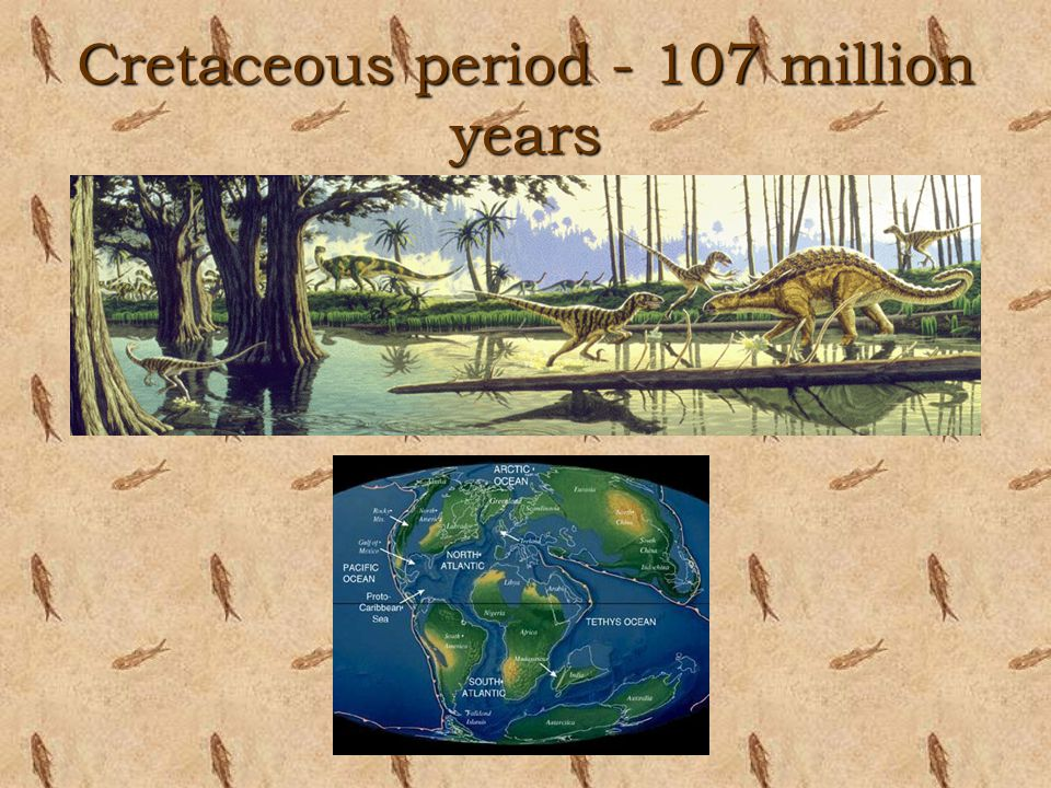 Cretaceous period - 107 million years