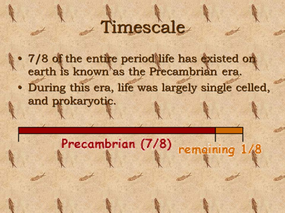 Timescale 7/8 of the entire period life has existed on earth is known as the Precambrian era.
