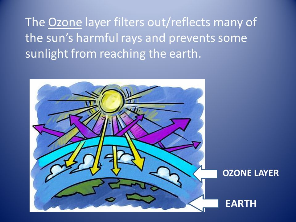 The Ozone layer filters out/reflects many of the sun's harmful rays and prevents some sunlight from reaching the earth.