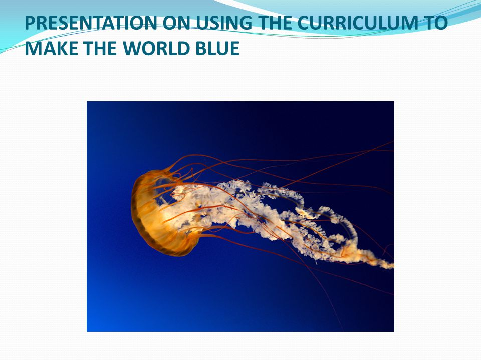 PRESENTATION ON USING THE CURRICULUM TO MAKE THE WORLD BLUE