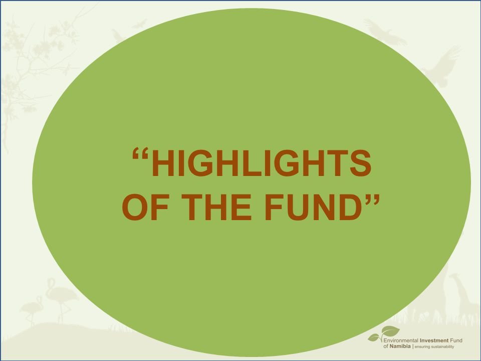 ''highlights of the fund''