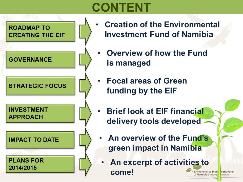 Content Creation of the Environmental Investment Fund of Namibia