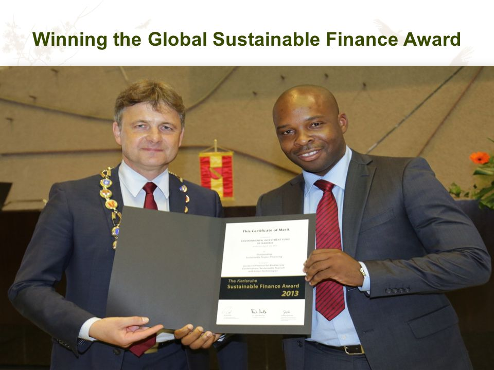 Winning the Global Sustainable Finance Award