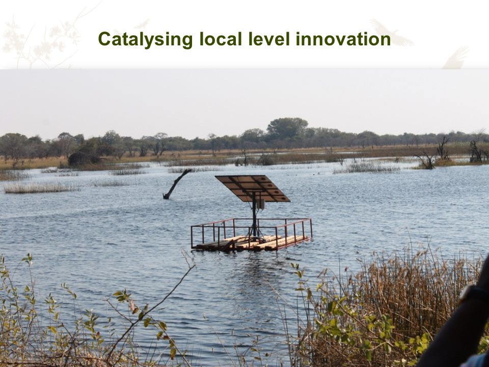 Catalysing local level innovation