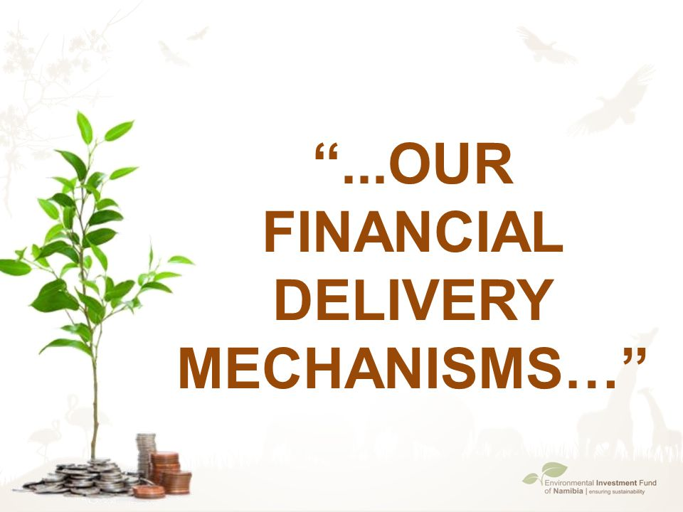 ''...Our Financial Delivery Mechanisms…''