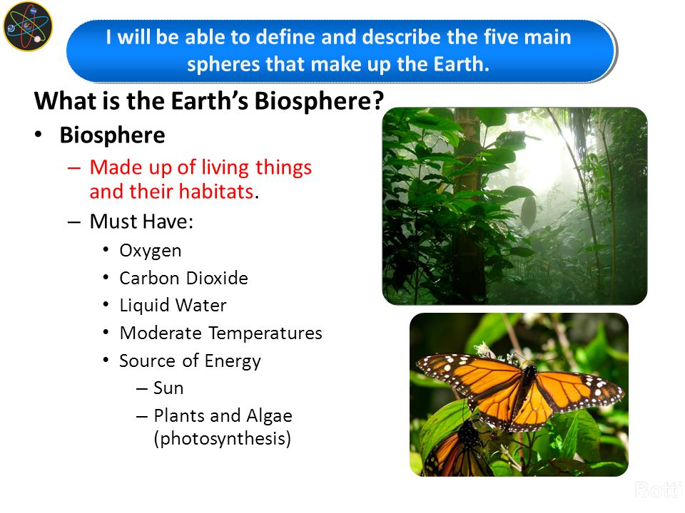 What is the Earth's Biosphere