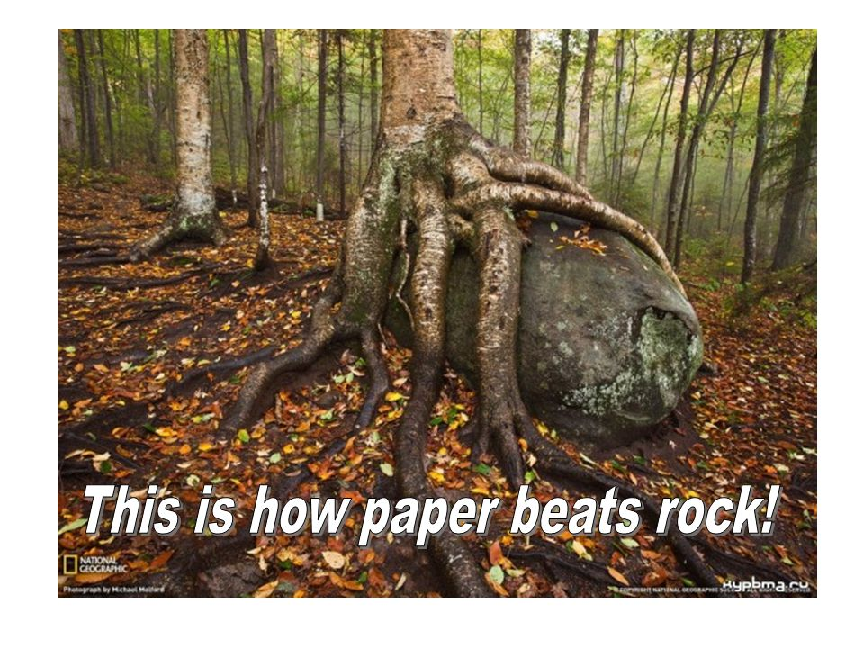 This is how paper beats rock!