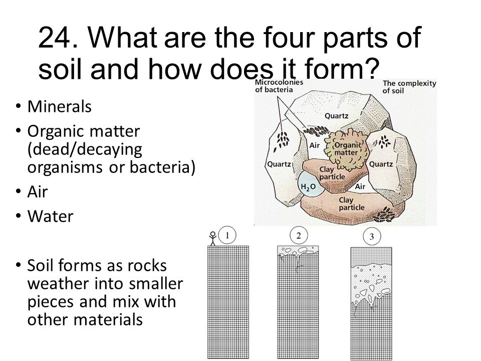 24. What are the four parts of soil and how does it form