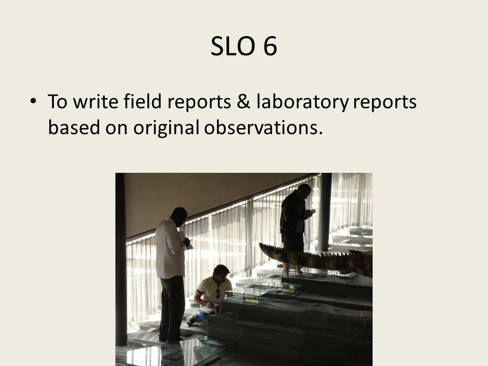 SLO 6 To write field reports & laboratory reports based on original observations.
