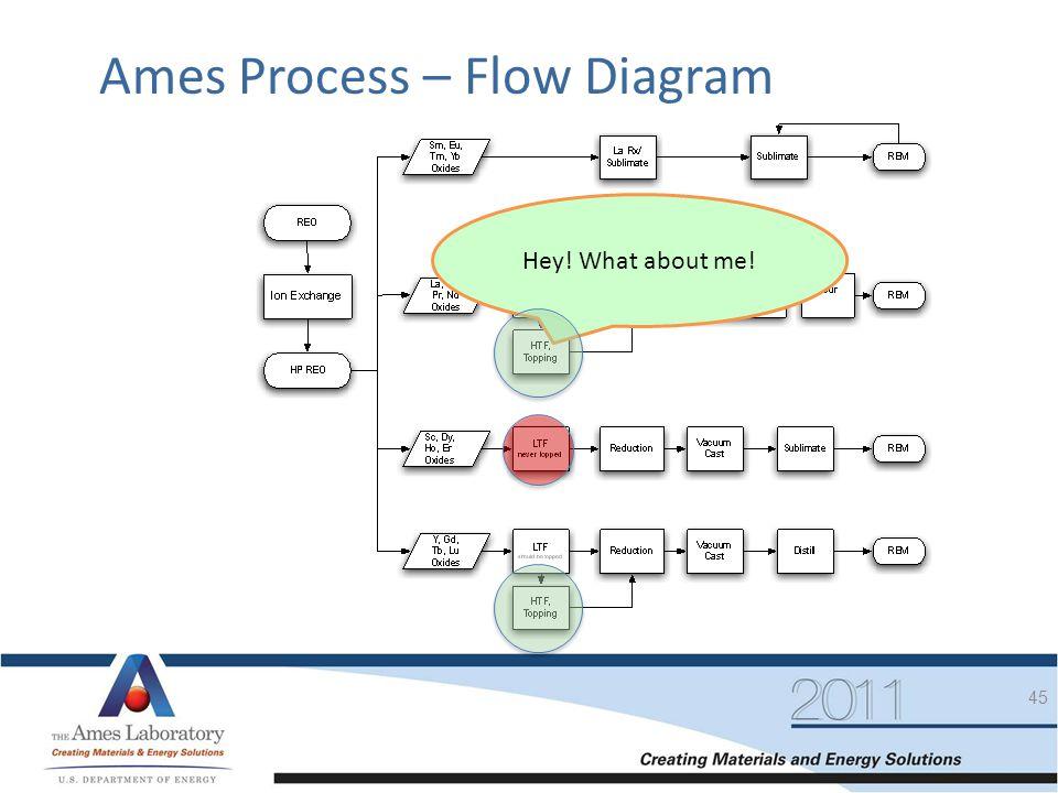 Ames Process – Flow Diagram