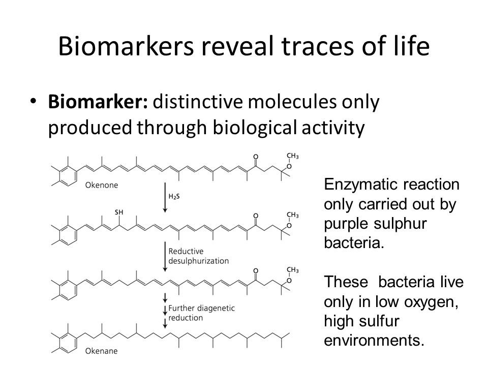 Biomarkers reveal traces of life