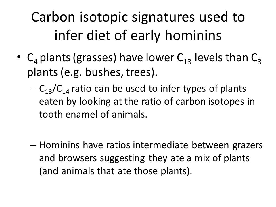 Carbon isotopic signatures used to infer diet of early hominins