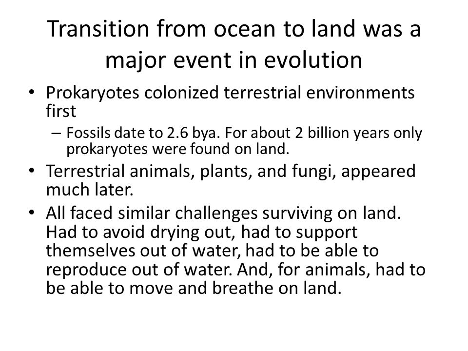Transition from ocean to land was a major event in evolution