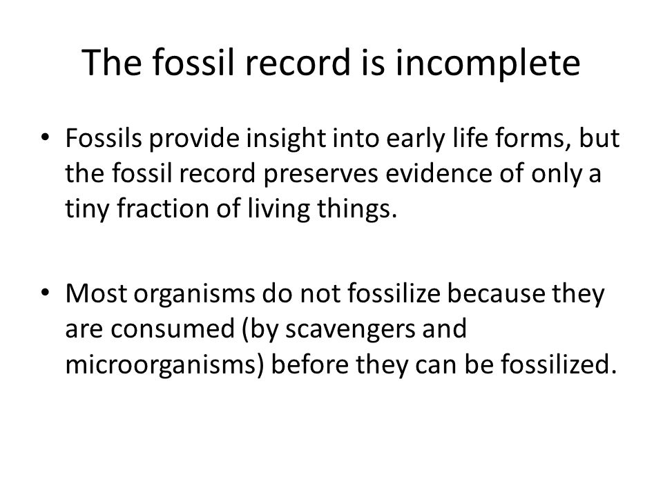 The fossil record is incomplete