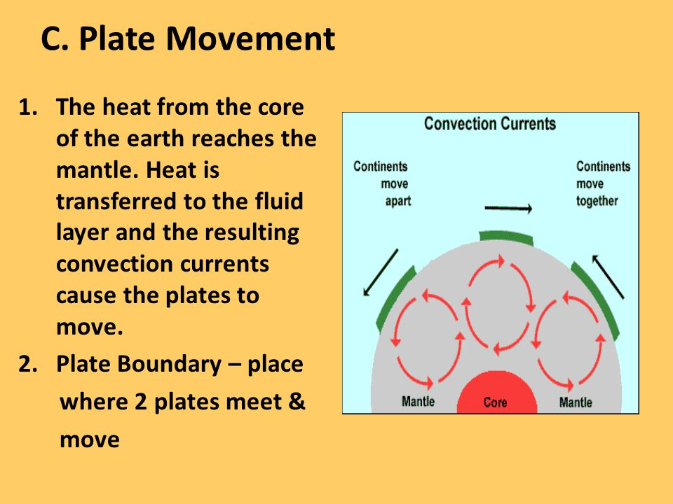 C. Plate Movement