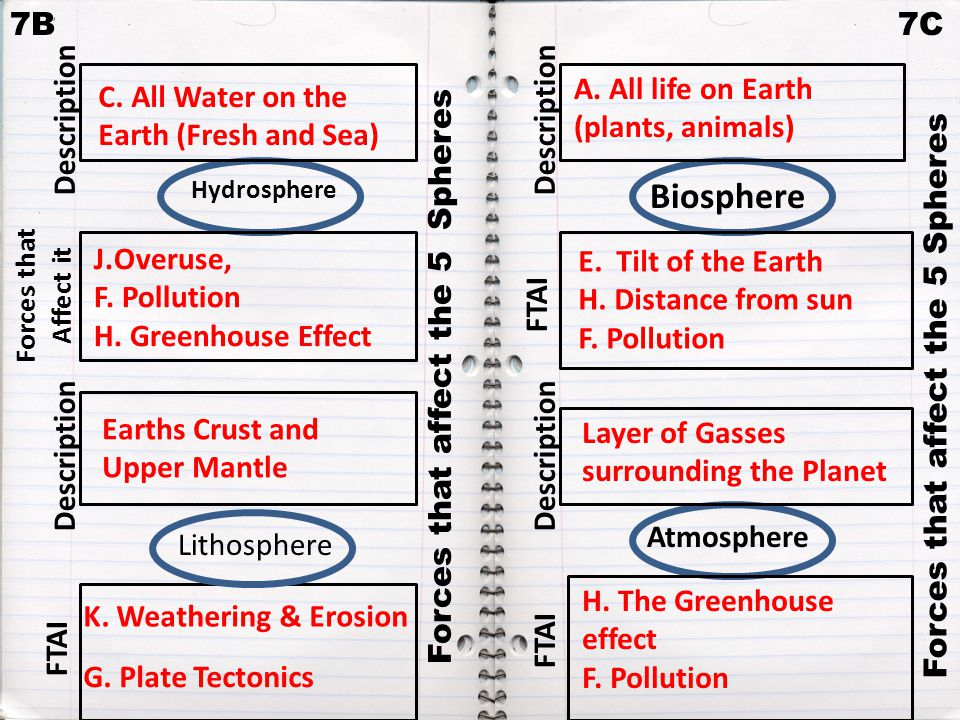 Biosphere 7B 7C A. All life on Earth (plants, animals)