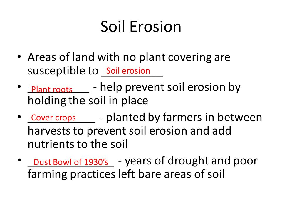 Soil Erosion Areas of land with no plant covering are susceptible to __________. __________ - help prevent soil erosion by holding the soil in place.
