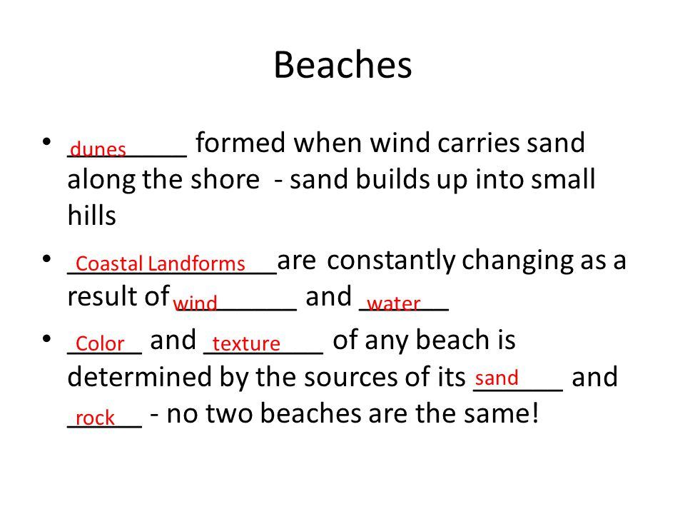 Beaches ________ formed when wind carries sand along the shore - sand builds up into small hills.