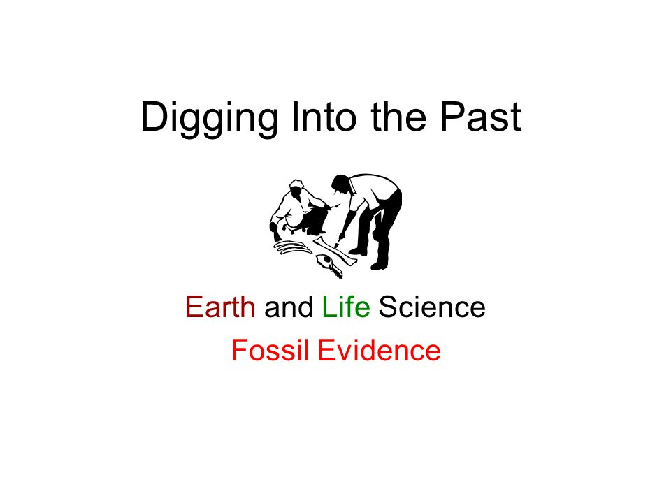 Earth and Life Science Fossil Evidence