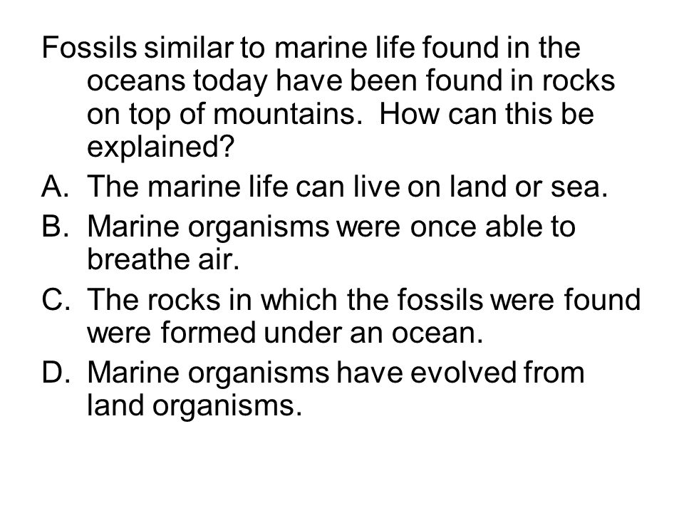 Fossils similar to marine life found in the oceans today have been found in rocks on top of mountains. How can this be explained
