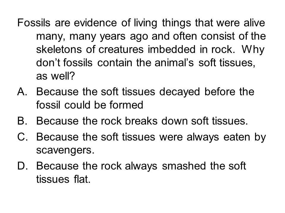 Fossils are evidence of living things that were alive many, many years ago and often consist of the skeletons of creatures imbedded in rock. Why don't fossils contain the animal's soft tissues, as well