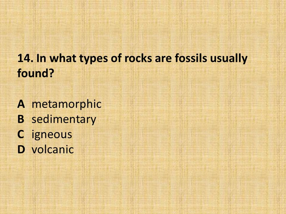14. In what types of rocks are fossils usually found. A. metamorphic B